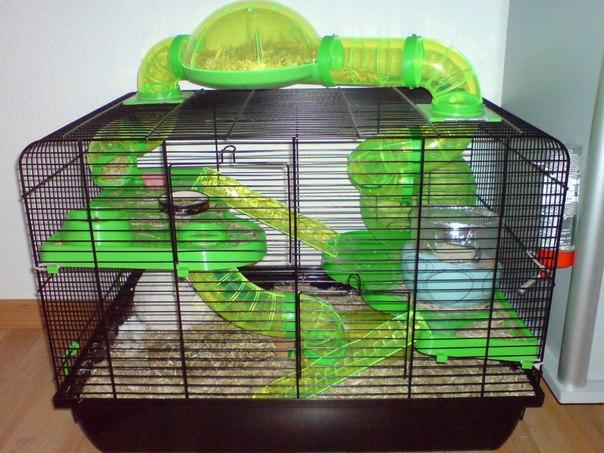 Клетка для хомяка с тунелями