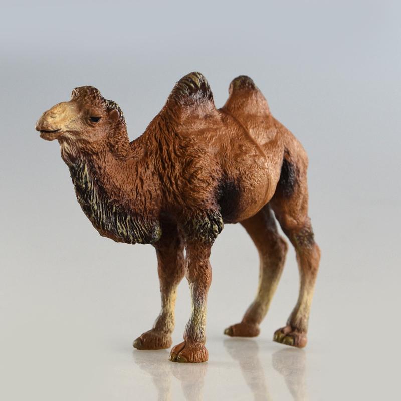 макет верблюда