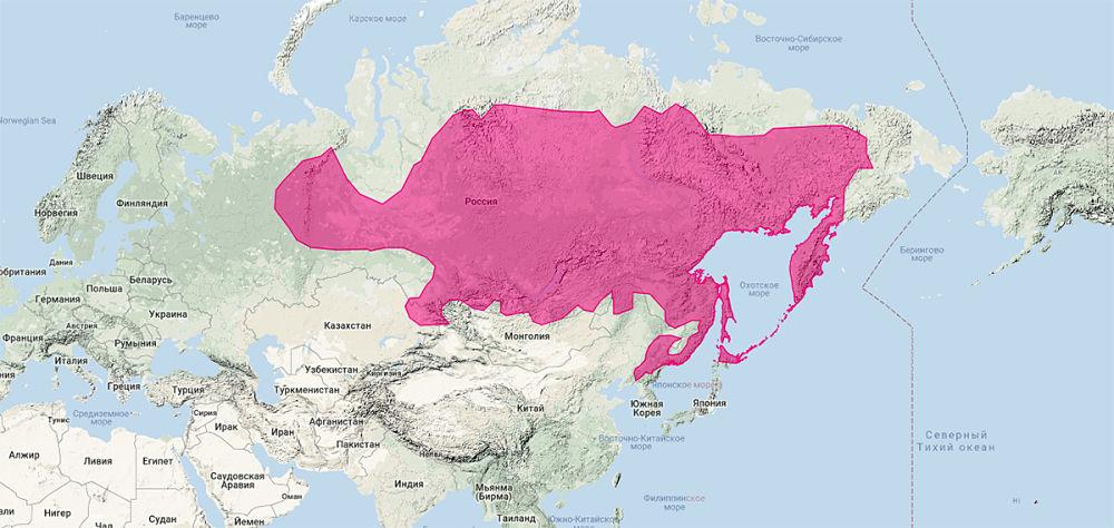 ареал обитания соболя на карте