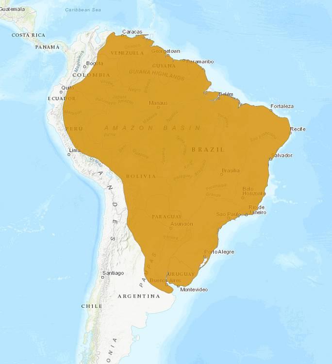 ареал обитания капибары на карте